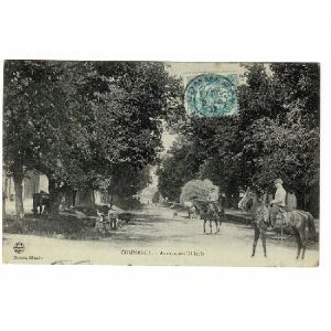 55 - COMMERCY (Marne) - Avenue des Tilleuls