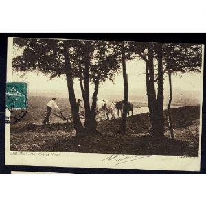 LABOURAGE  - Environs de NANCY - Charrue tirée par des chevaux